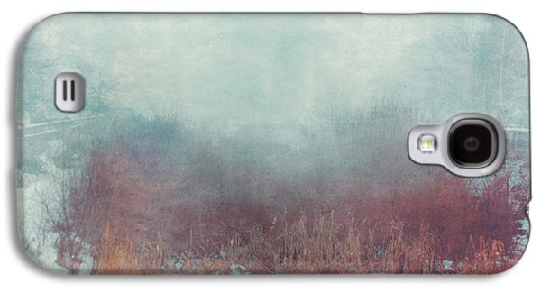 Ghastly Galaxy S4 Cases - Mist 5874 Galaxy S4 Case by Violet Gray