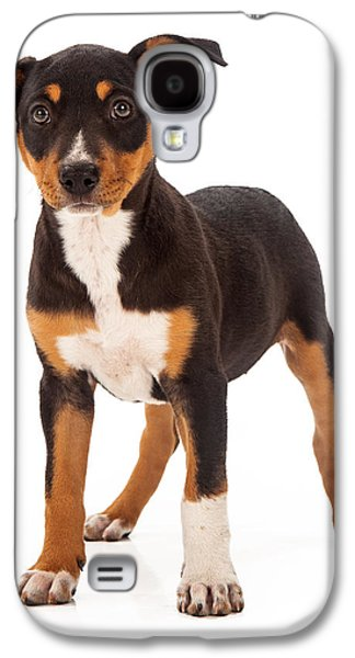 Training Photographs Galaxy S4 Cases - Mixed Breed Puppy Ear Up Galaxy S4 Case by Susan  Schmitz