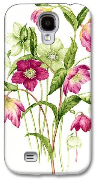 Tasteful Art Galaxy S4 Cases - Mixed hellebores Galaxy S4 Case by Sally Crosthwaite