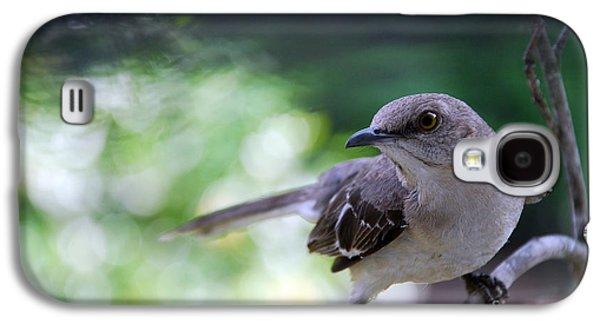 Photos Of Birds Galaxy S4 Cases - Mocking U Galaxy S4 Case by Skip Willits