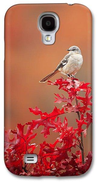 Mockingbird Autumn Galaxy S4 Case by Bill Wakeley