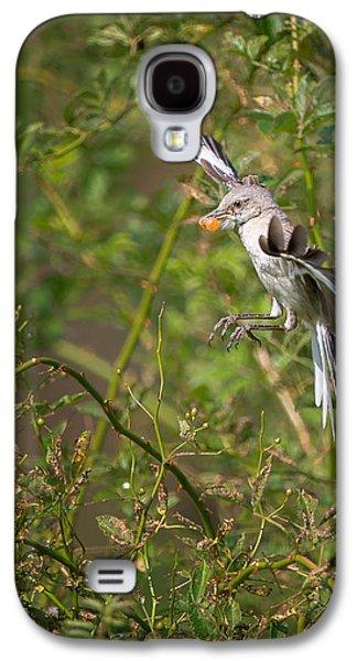 Mockingbird Galaxy S4 Case by Bill Wakeley