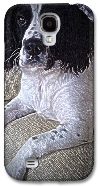 Dogs Pyrography Galaxy S4 Cases - Molly the Springer  Galaxy S4 Case by Robert Carter