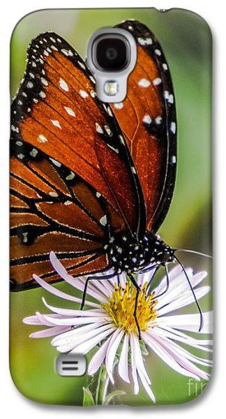 Plant Galaxy S4 Cases - Monarch butterfly Galaxy S4 Case by Zina Stromberg