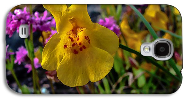 Haybale Galaxy S4 Cases - Monkey Flower Galaxy S4 Case by Robert Bales