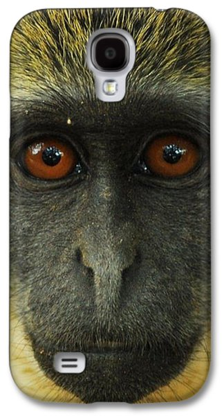 Portraits Tapestries - Textiles Galaxy S4 Cases - Monkey Stare Galaxy S4 Case by Robert Furtado