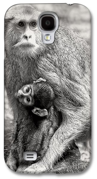 Nurture Galaxy S4 Cases - Monkeys Galaxy S4 Case by HD Connelly