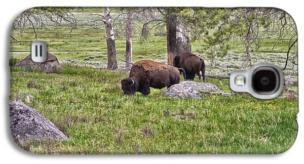 Bison Digital Art Galaxy S4 Cases - Montana Buffalo Grazing Galaxy S4 Case by Thomas Woolworth