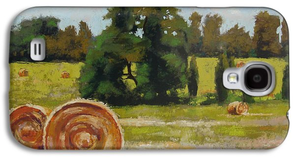 Haybales Pastels Galaxy S4 Cases - Montpelier Galaxy S4 Case by Diane Velasco