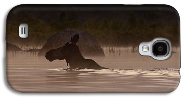 Moose Swim Galaxy S4 Case by Brent L Ander