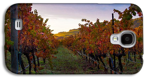 Vino Photographs Galaxy S4 Cases - Morning at the Vineyard Galaxy S4 Case by Bill Gallagher