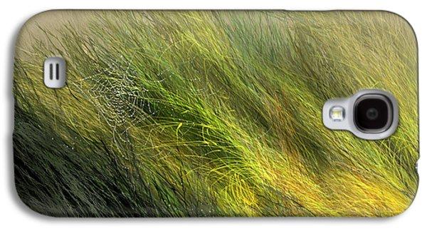 Field Digital Art Galaxy S4 Cases - Morning Dew Drops Galaxy S4 Case by Aaron Blaise