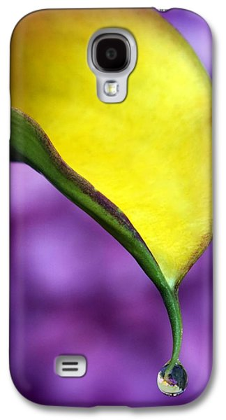 Torn Galaxy S4 Cases - Morning Dew Galaxy S4 Case by Karen Wiles