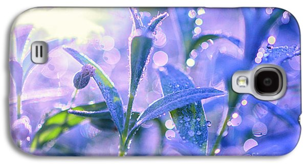 Blueish Galaxy S4 Cases - Morning Field Galaxy S4 Case by Sabine Jacobs