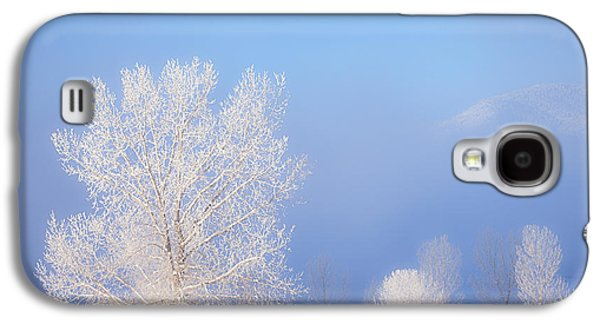 Winter Prints Galaxy S4 Cases - Morning Frost Galaxy S4 Case by Darren  White