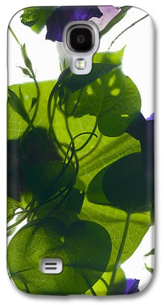 Morning Glory Rising Galaxy S4 Case by Julia McLemore