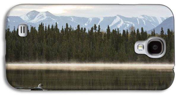 Loon Galaxy S4 Cases - Morning Mist in the Mountains Galaxy S4 Case by Tim Grams