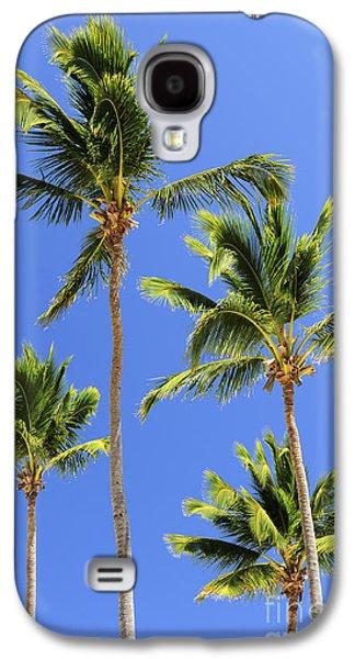 Garden Scene Galaxy S4 Cases - Morning palms Galaxy S4 Case by Elena Elisseeva