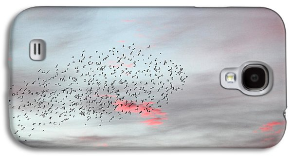 Reflection Of Sun In Clouds Galaxy S4 Cases - Morning Stretch II Galaxy S4 Case by E Faithe Lester
