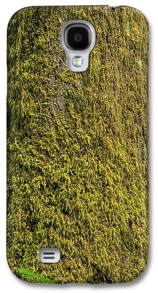 Moss Galaxy S4 Cases - Moss Covered Tree Olympic National Park Galaxy S4 Case by Steve Gadomski