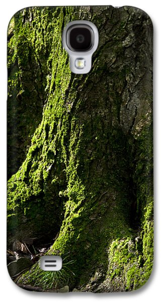 Abstract Nature Galaxy S4 Cases - Moss Covered Tree Trunk Galaxy S4 Case by Christina Rollo
