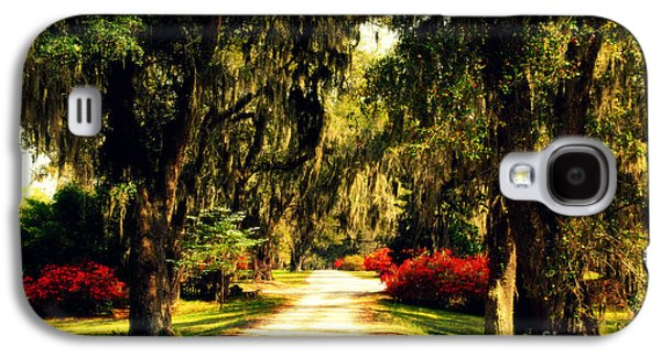Garden Scene Galaxy S4 Cases - Moss on the Trees at Monks Corner in Charleston Galaxy S4 Case by Susanne Van Hulst
