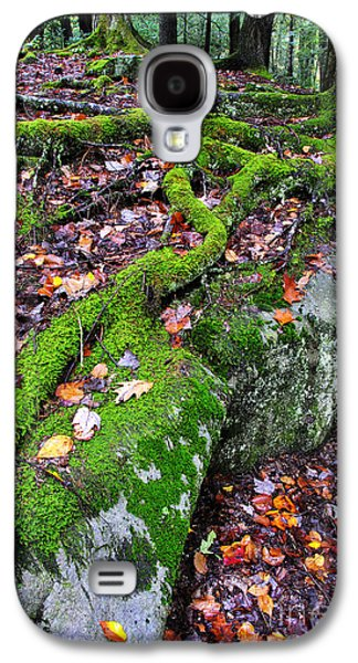 Tree Roots Photographs Galaxy S4 Cases - Moss Roots Rock and Fallen Leaves Galaxy S4 Case by Thomas R Fletcher