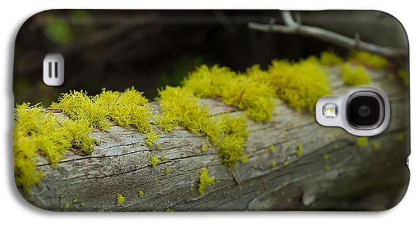 Recently Sold -  - Landscapes Photographs Galaxy S4 Cases - Moss Galaxy S4 Case by Sebastian Musial
