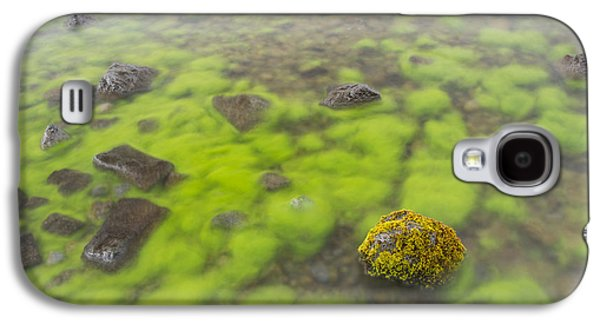 Nature Abstracts Galaxy S4 Cases - Mossy Stone In Lake Thingvallavatn Galaxy S4 Case by Bill Coster