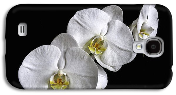 Tripple Galaxy S4 Cases - Moth Orchid Trio Galaxy S4 Case by Ron White