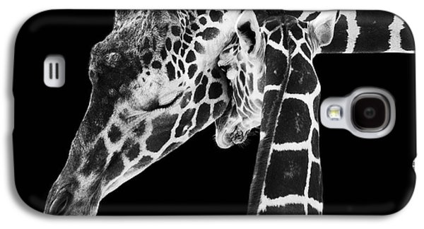 B Galaxy S4 Cases - Mother and Baby Giraffe Galaxy S4 Case by Adam Romanowicz