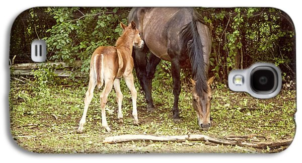 Rural Scenes Photographs Galaxy S4 Cases - Mother and Foal Galaxy S4 Case by Juli Scalzi