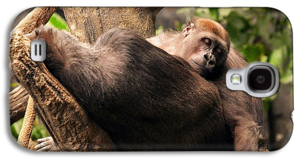 Gorilla Digital Galaxy S4 Cases - Mother and youg Gorilla sleeping in a tree Galaxy S4 Case by Chris Flees