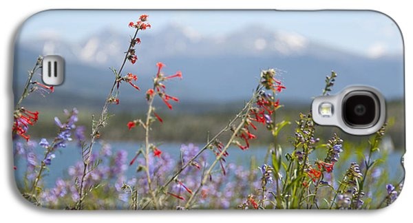 Reservoir Galaxy S4 Cases - Mountain Wildflowers Galaxy S4 Case by Juli Scalzi