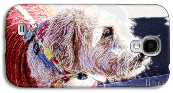 Dog Framed Prints Digital Art Galaxy S4 Cases - Mr Bailey Galaxy S4 Case by Beverly Guilliams