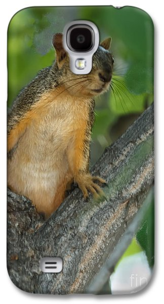 Fox Squirrel Galaxy S4 Cases - Mr.  Inquisitive  Galaxy S4 Case by Robert Bales