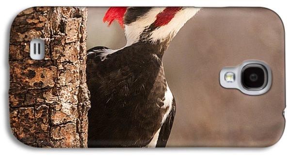 Mr. Pileated Galaxy S4 Case by Lara Ellis