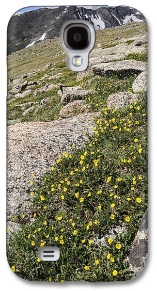 Unique View Galaxy S4 Cases - Mt. Evans Wildflowers Galaxy S4 Case by Aaron Spong
