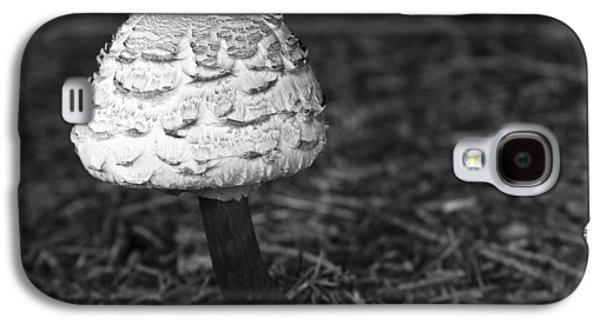 Forest Floor Galaxy S4 Cases - Mushroom Galaxy S4 Case by Adam Romanowicz