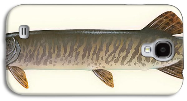 Blood Drawings Galaxy S4 Cases - Muskellunge  Galaxy S4 Case by Mountain Dreams