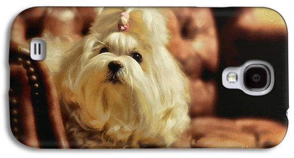 Dogs Digital Art Galaxy S4 Cases - MY Chair Galaxy S4 Case by Lois Bryan