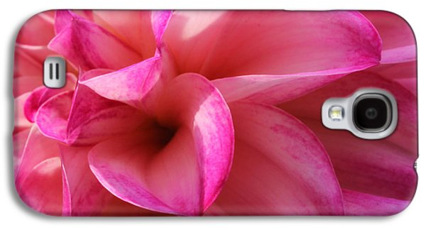 Pinks And Purple Petals Photographs Galaxy S4 Cases - My Fair Lady Galaxy S4 Case by Rachel Cohen