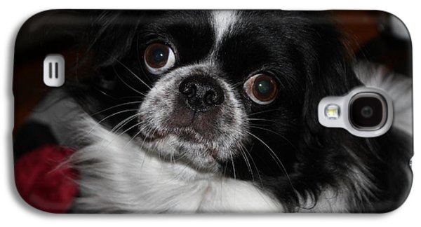 Puppy Digital Galaxy S4 Cases - My Name Is Lucky Galaxy S4 Case by Cynthia Guinn