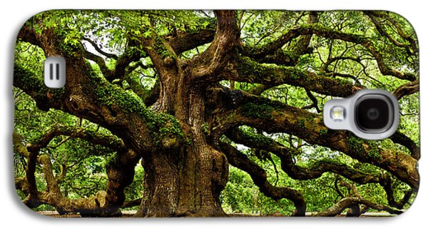 Carolina Galaxy S4 Cases - Mystical Angel Oak Tree Galaxy S4 Case by Louis Dallara