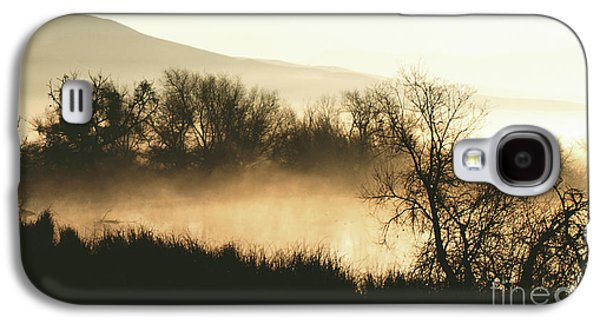 Laura Wrede Galaxy S4 Cases - Naked Trees 2 Galaxy S4 Case by Artist and Photographer Laura Wrede