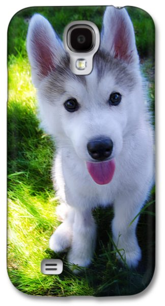 Puppy Digital Art Galaxy S4 Cases - Nanook of the North Galaxy S4 Case by Bill Cannon