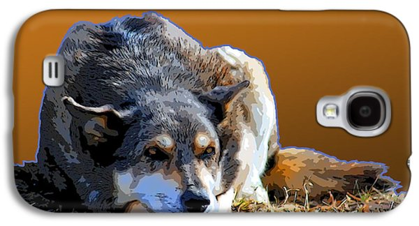 Dogs Digital Art Galaxy S4 Cases - Nap In The Sunshine Galaxy S4 Case by Renee Forth-Fukumoto