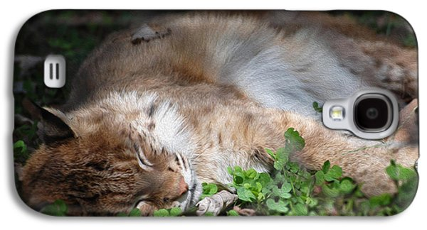 Bobcats Digital Galaxy S4 Cases - Nap Time Galaxy S4 Case by Anita Hubbard
