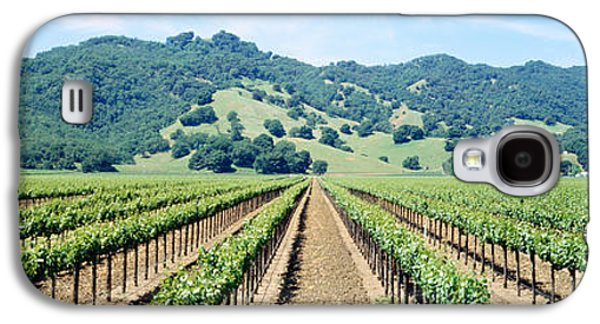 Grapevines Photographs Galaxy S4 Cases - Napa Valley Vineyards Hopland, Ca Galaxy S4 Case by Panoramic Images