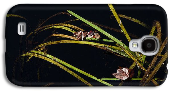 Nature Abstract Galaxy S4 Cases - Nature Floats Galaxy S4 Case by Karol  Livote